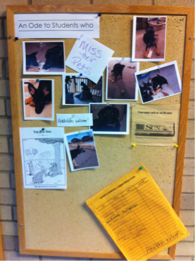 Students, do you miss your pet? Post a photo on the bulletin board outside Meredith 121.