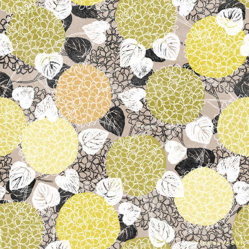 paperbicyclecreative:  101 Florals: Hydrangea Lindsay Nohl