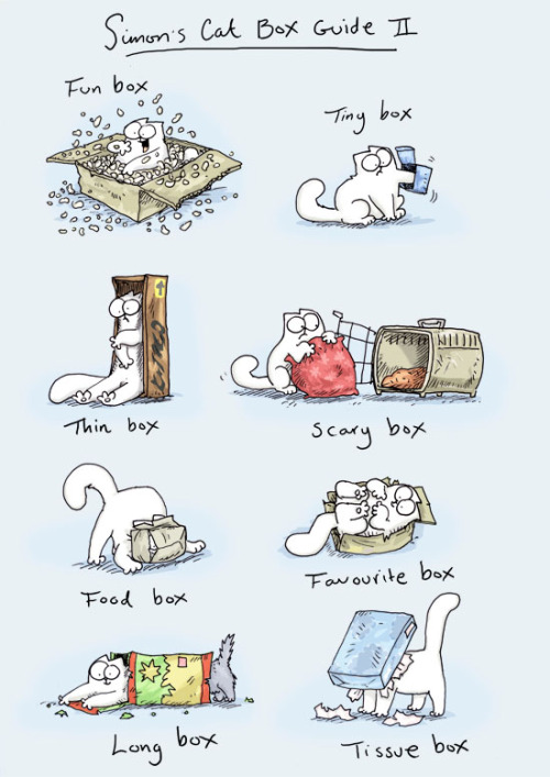 1000drawings:  Simon's Cat