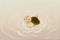 marauders4evr:  This is a turtle duck. Reblog the turtle duck. … Why? Because it's a turtle duck. Make the turtle duck tumblr famous. For no reasons other than the fact that it's a turtle duck.