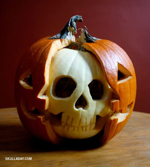 makeawesomestuff:  Jack-O-Lantern Anatomy  I think I'll have to copy this for my Halloween this year ;)