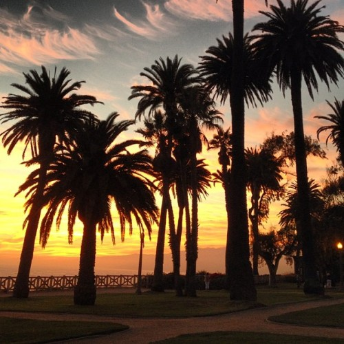 Front row seat to my favorite time of day. Good one tonight #santamonica #sunset (Taken with Instagram at Palisades Park)