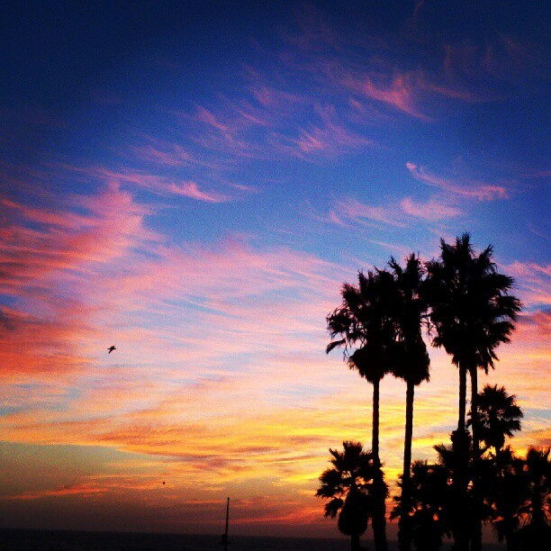 Gotta love California #sunset #again #santamonica #pier #socal #california (Taken with Instagram)