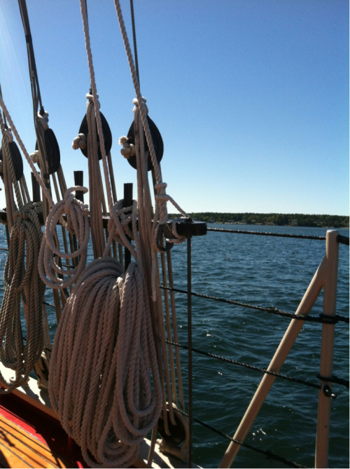 I love sailing on the ocean, this was my first time doing it in Maine