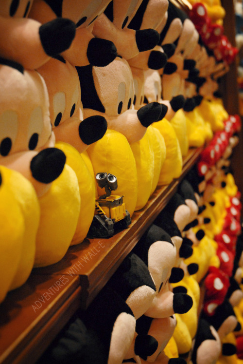 So many Mickeys… 250/366