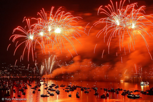 scenesque:  Sydney 2009 New Year Eve Firework by -yury- on Flickr.