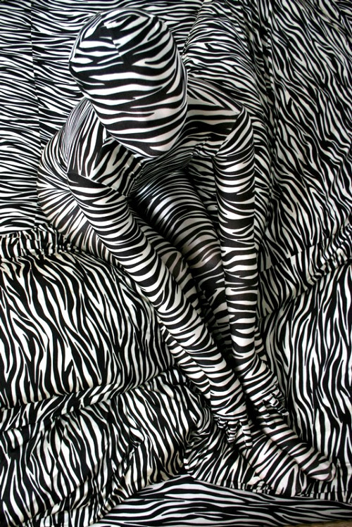 colormesylverwoodandglass:  Zebra by Suya, 1978