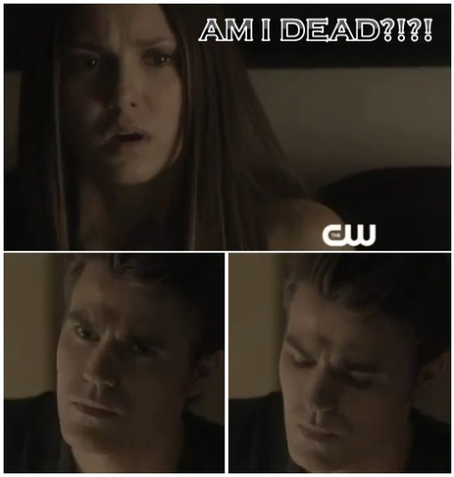tvfanaticdotcom:  Reblog this sneak peak from The Vampire Diaries Season 4.  OMGGGG :'(((