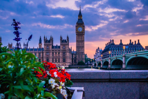 """Flowers for Big Ben"" by Jose Vazquez"