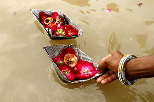 fotojournalismus:  A Hindu woman offers flowers at the Sangam, the confluence of the Ganges, Yamuna and mythical Saraswati, river during Teej festival in Allahabad, India, Tuesday, Sept. 18, 2012. [Credit : Rajesh Kumar Singh/AP]