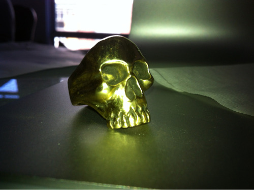 I picked up this really great brass skull ring from local skate shop ProSkates. It was designed and crafted by a local artist whose name escapes me. I really dig it.