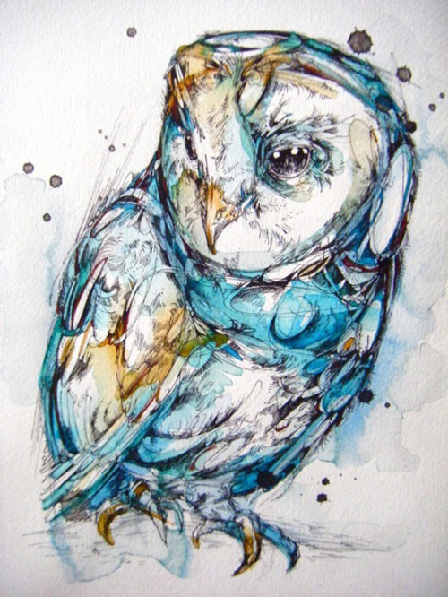 devidsketchbook:  INK, PAINT AND FEATHERS | ILLUSTRATIONS BY ABBY DIAMOND Abby Diamond is a young illustrator and art student from Pennsylvania. She gets inspired mostly by birds, insects and nature in general and creates beautiful colourful illustrations. follow on tumblr | behance | society6  go take a look at these because they are great.