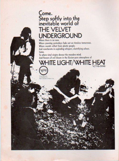 a-rebel-without-applause:  White Light/White Heat