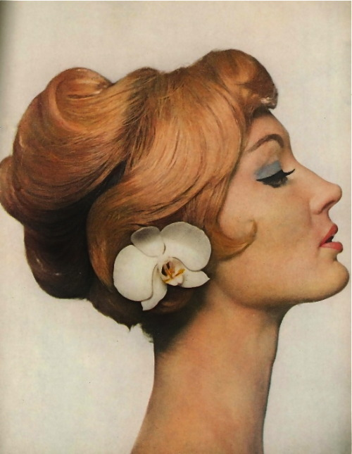 hollyhocksandtulips:  Evelyn Tripp for Harper's Bazaar, 1959