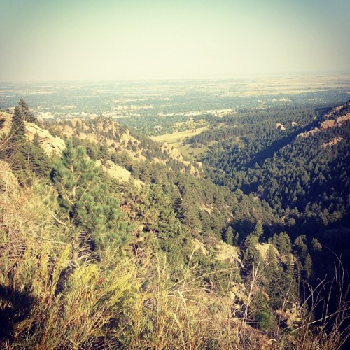 Flagstaff DH sesh. Epic.  (Taken with Instagram)