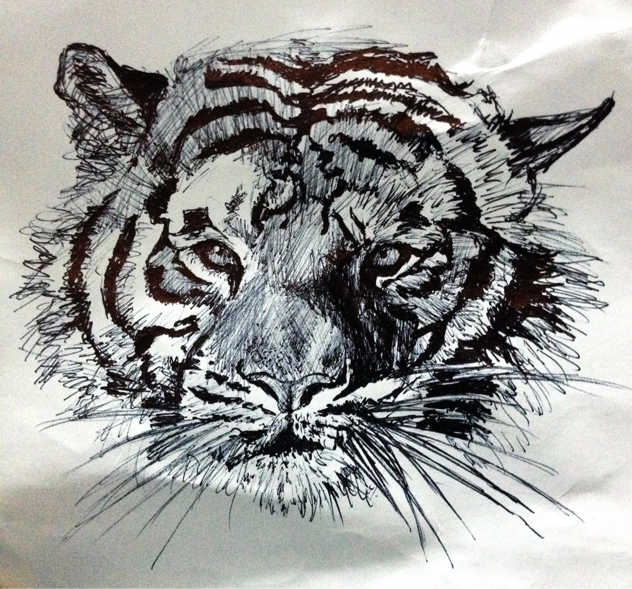 rizwansartgallery:  A quick sketch I did using a biro pen