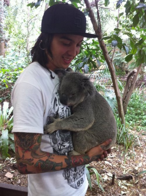 turtletony:  That awkward moment when your jealous of a koala.  who is this