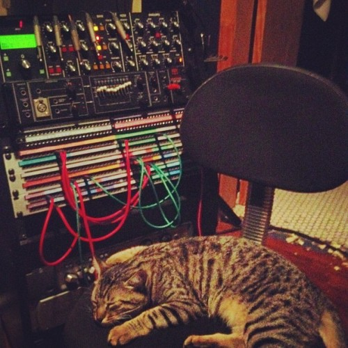 Studio sidekick (Taken with Instagram)