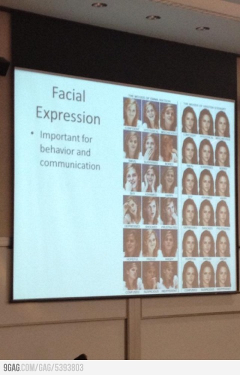 A lecture on facial expression