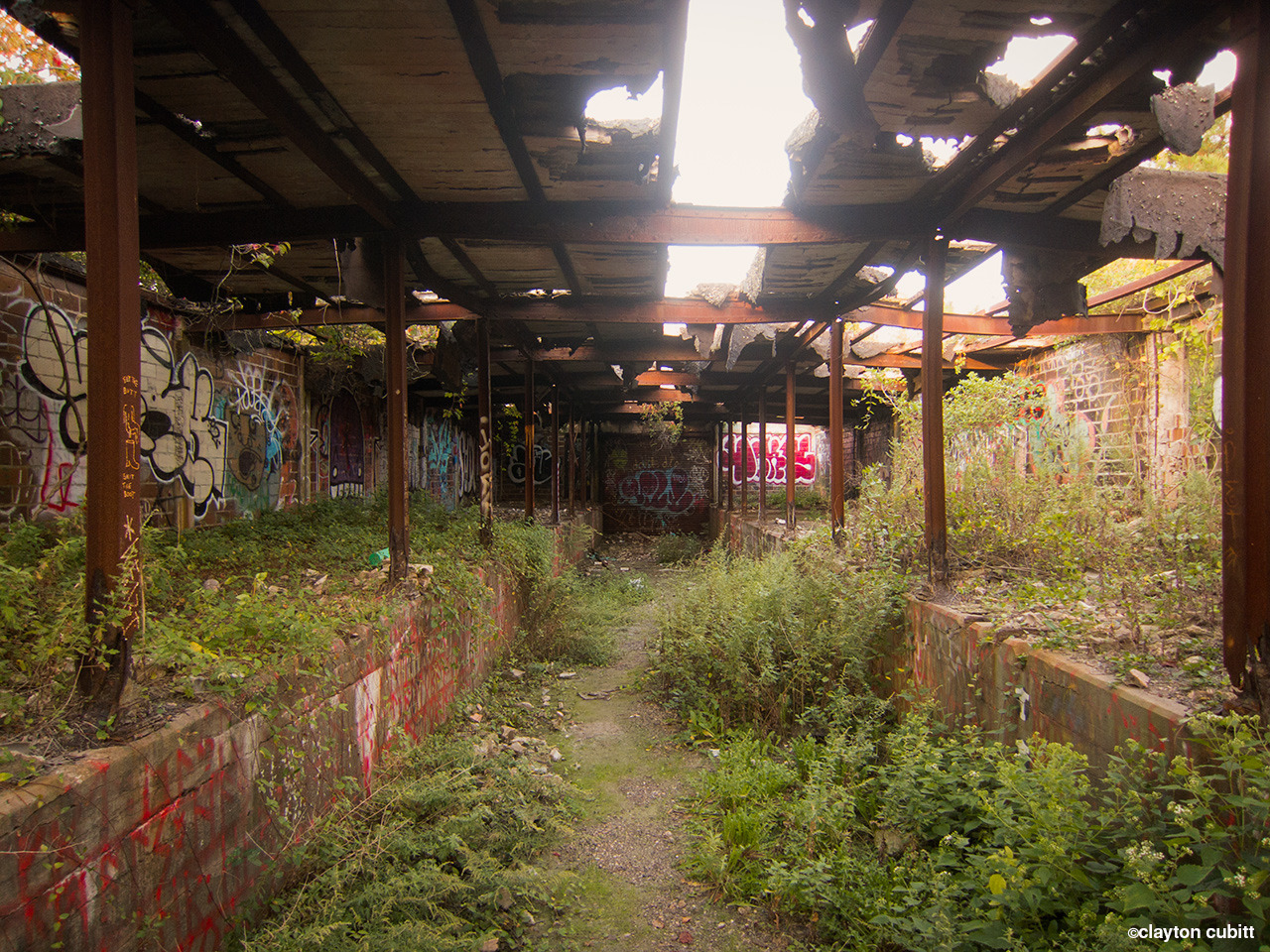 claytoncubitt:  Abandoned rail depot, Ft Tilden   (4139)