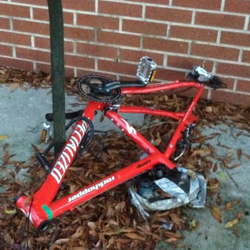 You might want to invest in a new bike… #usf #bike #half #funny (Taken with Instagram)