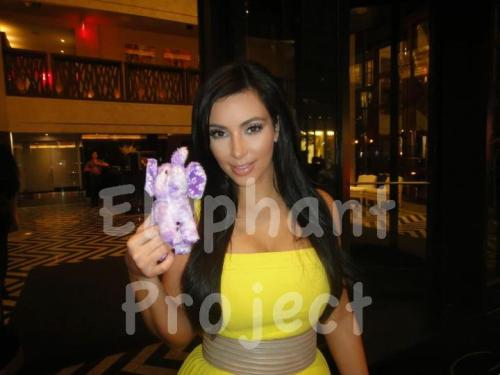 Here is Kim Kardashian posing with the elephant beanie baby to help fight Alzheimer's disease with The Elephant Project. This photo, along with a beanie baby with a tag signed by Kim, is currently being auctioned off on eBay with all proceeds going to the Alzheimer's Association! Click here to bid on the auction! Follow us on Twitter @elephantproject to learn more about the auctions and also for some contests we'll be holding to win free 5x7 prints of the Elephant Project pictures.