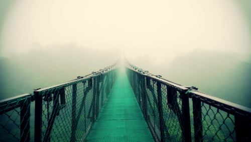 landscaped:  Suspension Bridge by Sookie Endo