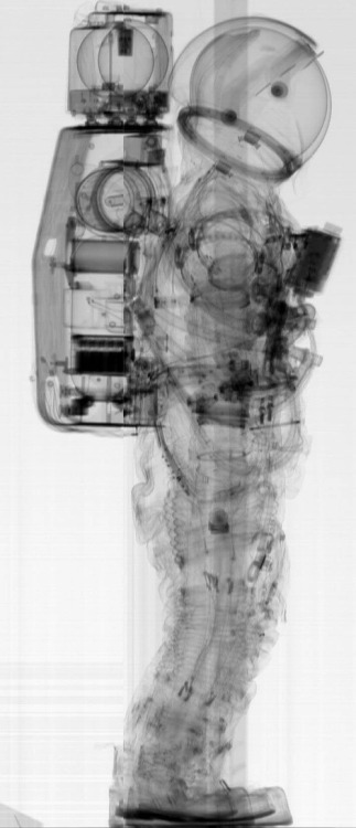 ryandonato:  A pre-flight CT scan of a NASA A7L spacesuit, the type of suit worn during theApollo missions. These scans were apparently taken to ensure that there were no pins or needle points accidentally left in the apparel that could puncture the pressure suite.