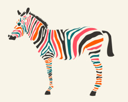 Zebra by Jazzberry Blue