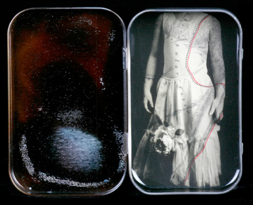 Heidi Kirkpatrick, The Red Thread, Cased Images (Specimens), 2011Film positive on found object layered over vintage Gray's Anatomy page.