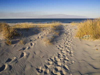 Footsteps [explored] by parkerbernd on Flickr.