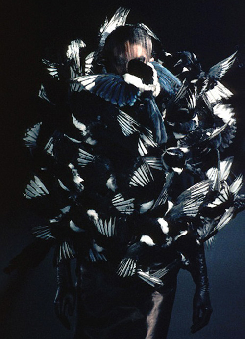 shoulderblades:  olivier theyskens s/s 1999