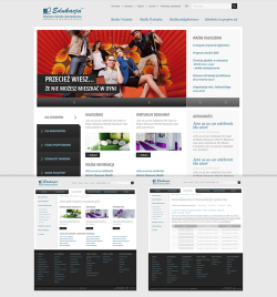 WSZ EDUKACJA website layout made for Lama Media