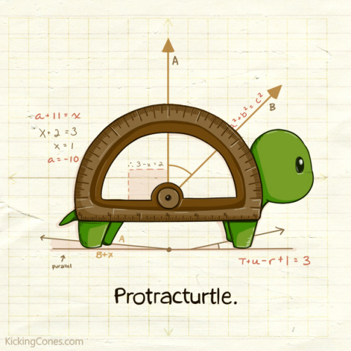 Protracturtle by Katrina Constantine [tumblr]