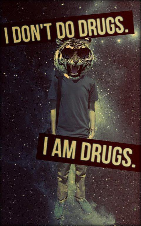 I don't do drugs. I am Drugs.