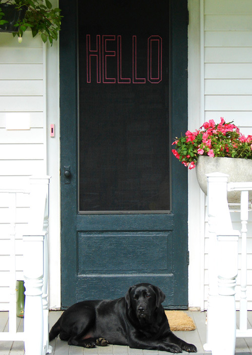 "Try adding a little personality to your entrance. After all, it IS the face of your home. DesignSponge showcases a ""DIY stitched screen door project"" that adds a little funk to an otherwise, mundane stoop.  - Team Forrage"