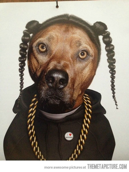 Now I need to find one with Snoop Lion… (via Snoop Dogg Dog - The Meta Picture)