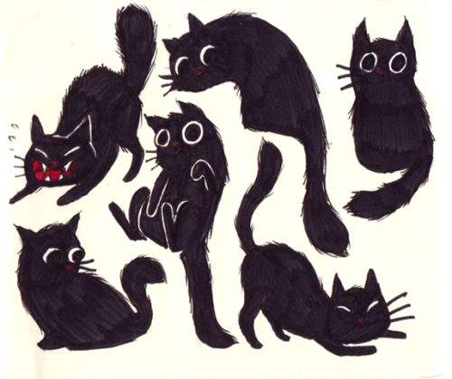 a2t5:  today i drew lots of cats