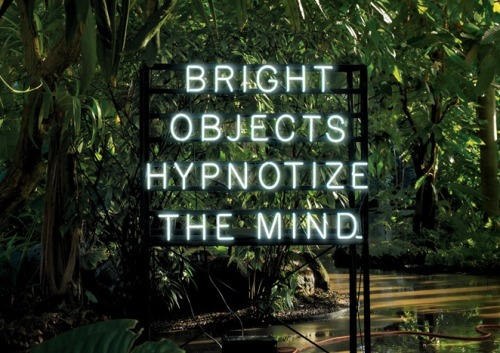 nevver:  Bright objects hypnotize the mind