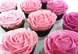 pretty popular cupcakes pink girly rose ombre valentines valentines day cupcake pink cupcakes gradient rose cupcakes