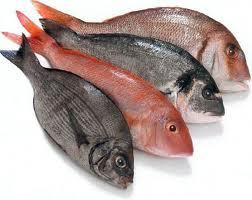 Sushi vulling vis
