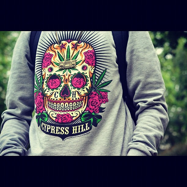 #photograph #photoshoot #photography #cypress #cypresshill #ch #jumper #fashion #skull #roses #weed #weedleaf #ghettoblaster #weedplant #cannabis #grey #purple #green #violet #chain  (Taken with Instagram)