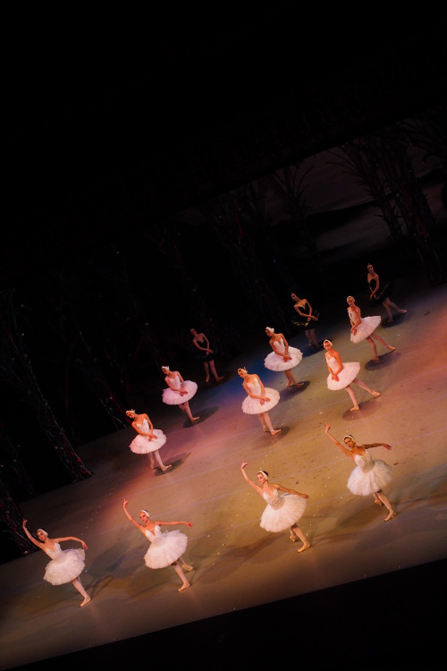Swan Lake at the Alexandrinsky Theatre, St Petersburg.