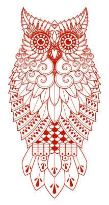 #Owl illustration.