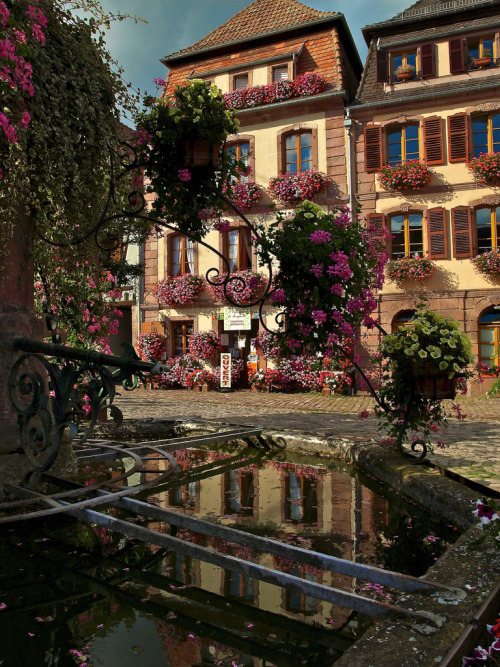 allthingseurope:  Bergheim, Alsace, France (by Bleu Nature)