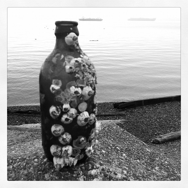 Fun beach finds. #Art #random #seattlelove  (Taken with Instagram at Seacrest Park)