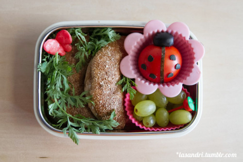 lasandri:  Ladybug Garden Bento. Whole wheat bagel and cream cheese, one whole tomato, green grapes. The butterfly is a starburst cut out into that shape :)