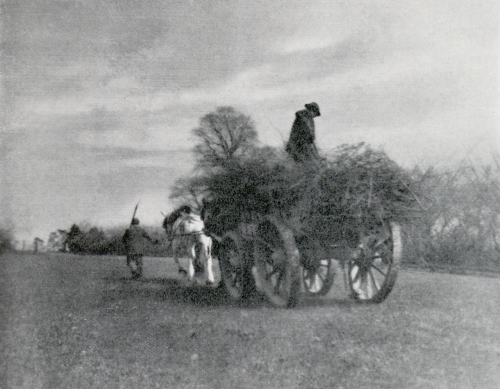 Carting Trowse, 1902 by Charles F. Grindrod