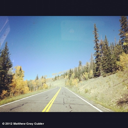 gublernation:  road to the lorax View more Matthew Gray Gubler on WhoSay