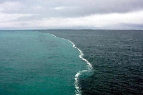 Cape Point, South Africa Where the Indian and Atlantic Ocean meet.